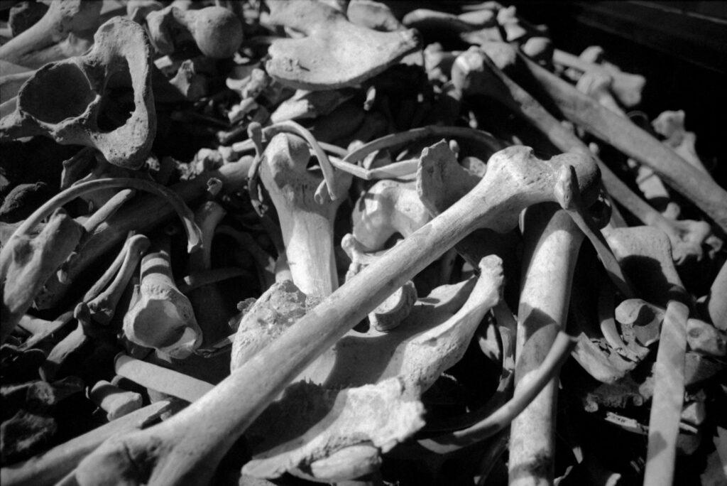 Polonia, Lublin, 1994. Huesos guardados en cajas en el crematorio del campo de concentración de Majdanek. Foto: Erich Hartmann (Magnum), en el libro 'In the camps'.