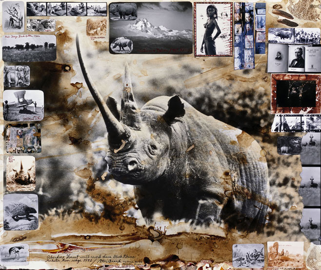Collage de fotos de Peter Beard intervenido en sangre. La foto central es de un rinoceronte.
