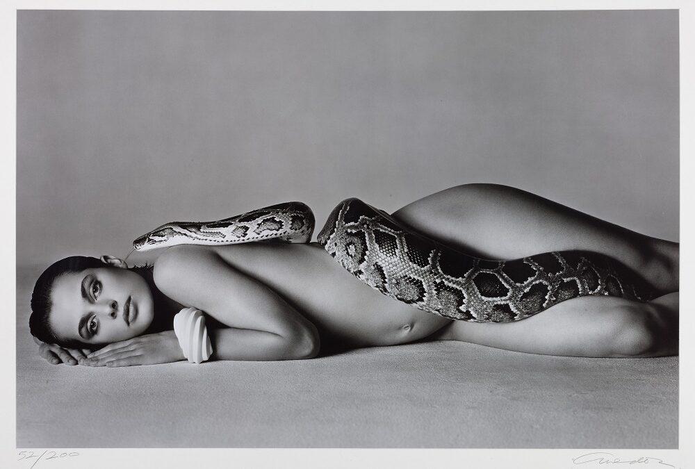 La curiosa historia tras 'Nastassja y la serpiente', la icónica fotografía que surgió de la unión entre Richard Avedon y Nastassja Kinski